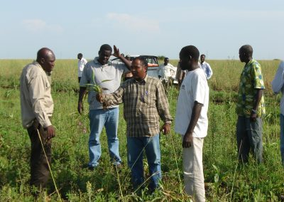 Extension with local experts in South Sudan