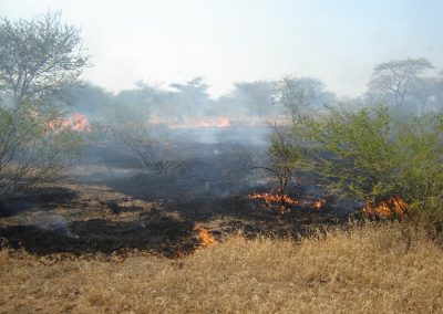 Savanna wildfire in South Sudan